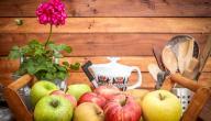 علاج المرارة بالتفاح: حقيقة أم خرافة قد تضرك؟