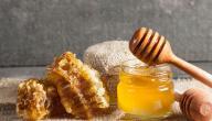 هل يوجد علاج لجرثومة المعدة بالعسل؟ وما رأي العلم؟