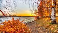 مميزات فصل الخريف