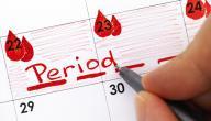 تنظيم الدورة الشهرية