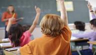 موضوع تعبير عن أهمية المدرسة