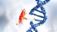 أكثر الأمراض الوراثية شيوعًا