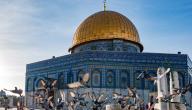 أماكن أثرية في فلسطين