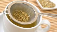 معلومات عن شاي الشمر
