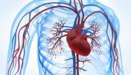 علاج قصور الدورة الدموية