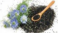 علاج البلهارسيا بالأعشاب: حقيقة أم خرافة قد تضرك؟