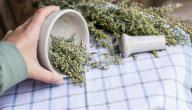 علاج تهيج القولون بالأعشاب: حقيقة أم خرافة قد تضرك؟