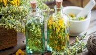 علاج التهاب العظام بالأعشاب: حقيقة أم خرافة قد تضرك؟