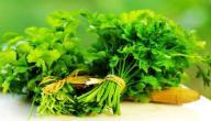فوائد الكزبرة الخضراء
