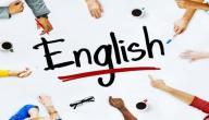 اختصارات الأفعال والضمائر في اللغة الإنجليزية