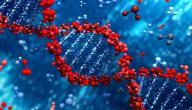 ما هو علم الكيمياء الحيوية