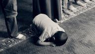 منهج القدوة في تربية الأبناء