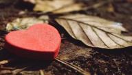 أقوال عن الحب