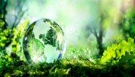 معلومات عن عناصر البيئة