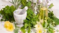 علاج دوالي الخصية بالأعشاب: حقيقة أم خرافة قد تضرك؟