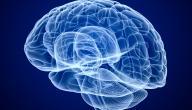 معلومات عن ضمور المخ