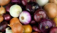 كيفية تخزين البصل بكميات كبيرة