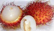 معلومات عن فاكهة الرامبوتان