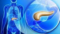 ما هي وظيفة الأنسولين