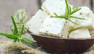 طريقة عمل الجبن البلدي