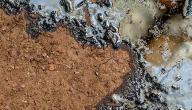 حلول تلوث التربة