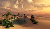 موضوع تعبير عن جمال الصحراء