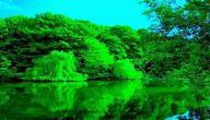 دلالة اللون الأخضر