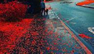 دلالة اللون الأحمر