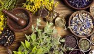 هل يوجد علاج لارتفاع البوتاسيوم بالأعشاب؟ وما رأي العلم؟