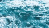 فوائد ماء البحر