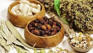 علاج التهاب النخاع الشوكي بالأعشاب الطبيعية ومدى خطورة هذا الاعتقاد