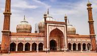 ما هي المذاهب الأربعة في الإسلام