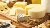 كيفية صناعة الجبن