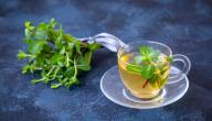 هل من علاج للتخمة بالأعشاب؟ أم هو مجرد خرافة؟