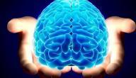 تعريف كيمياء الدماغ