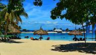 معلومات عن جزيرة ماكتان