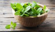 هل يمكن التخلص من التجشؤ بالأعشاب؟