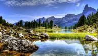 كلام عن جمال الطبيعة