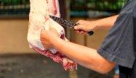 كيفية توزيع لحم العقيقة