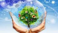 تعبير عن الحفاظ على البيئة