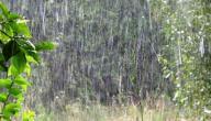 دعاء نزول المطر الشديد