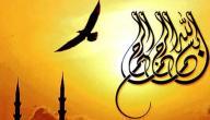 خاطرة عن اللغة العربية
