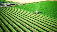 موضوع تعبير عن الزراعة بالعناصر