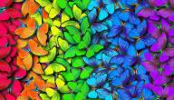 عبارات عن الألوان