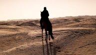ما هو لقب الصحابي حمزة بن عبد المطلب