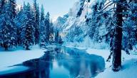 كلمات عن الشتاء