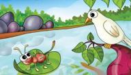 قصة الحمامة والنملة