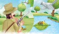 قصة الحمامة والصياد