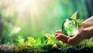 تعبير عن حماية البيئة
