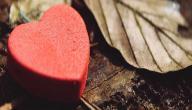 أجمل ما قيل في الحب والعشق